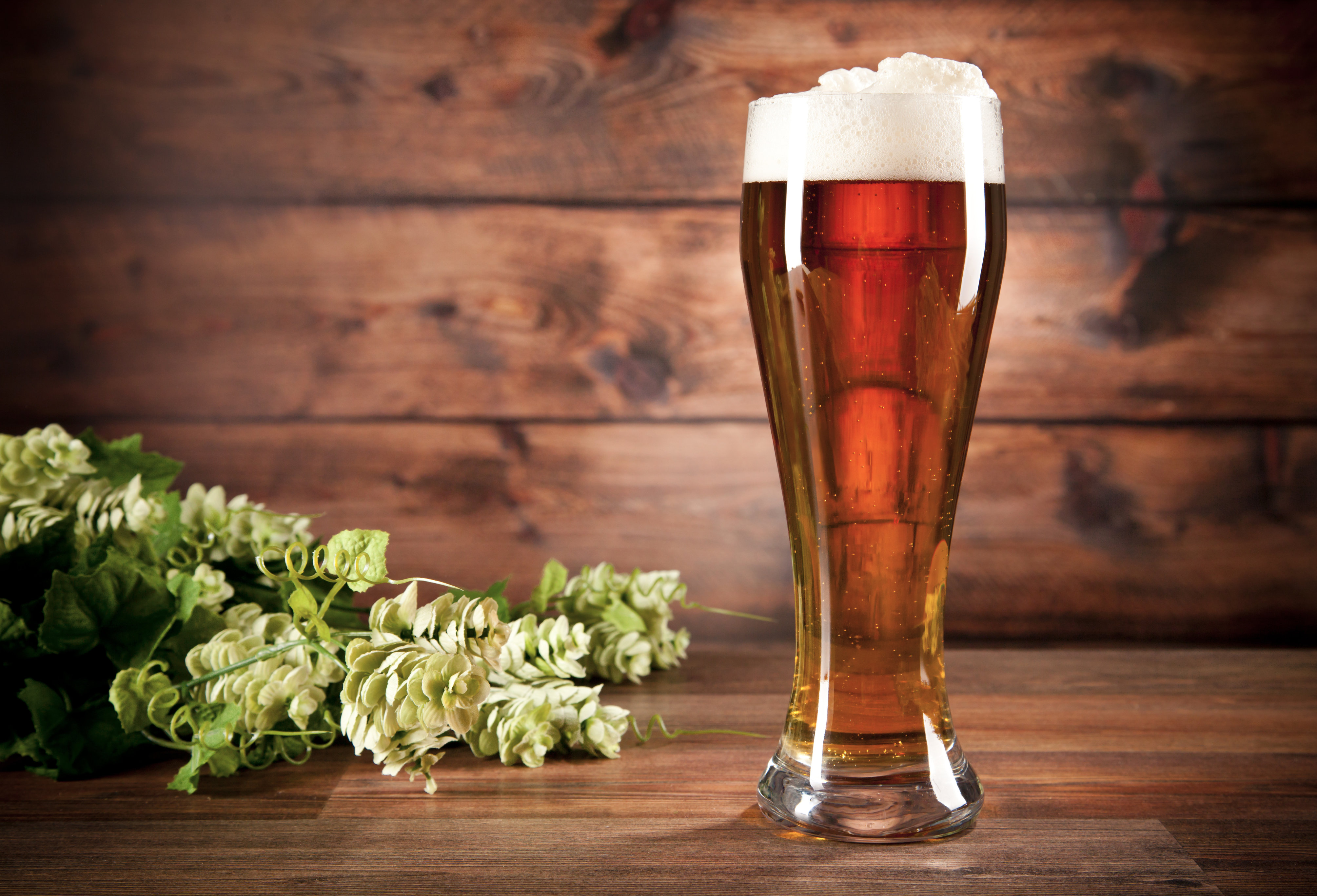 How and with what to drink beer: the best snacks and recommendations 38